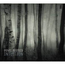 Pavol Bereza: Intuition MP3