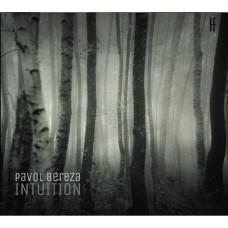 Pavol Bereza: Intuition