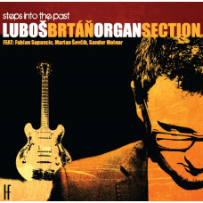 Luboš Brtáň: Organ Section MP3